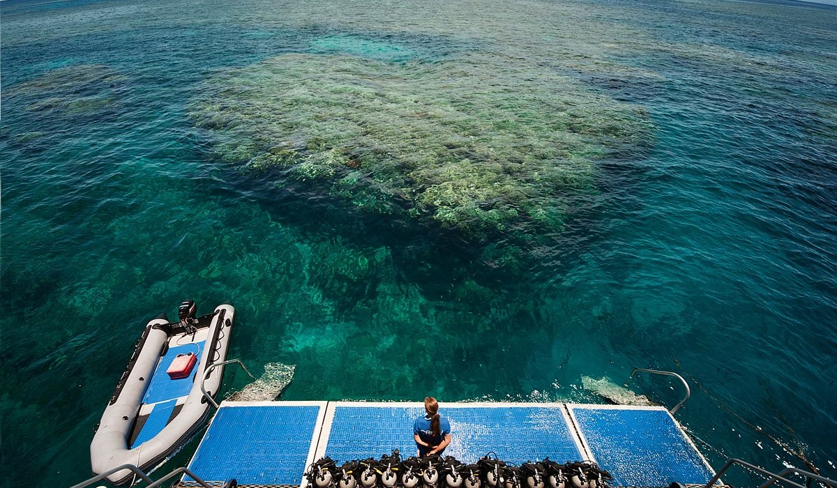 Reef Experience Cairns best reef tour
