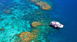 Cairns Reef Tours